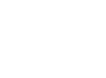 Official Selection - Slamdance 2017